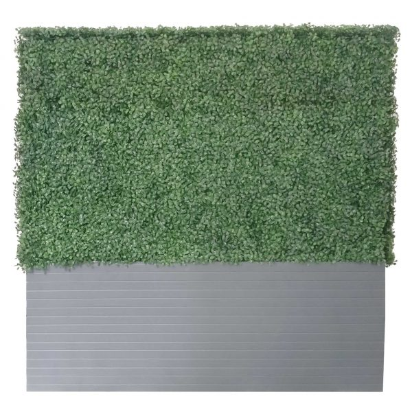 artigwall-artificial hedge-1