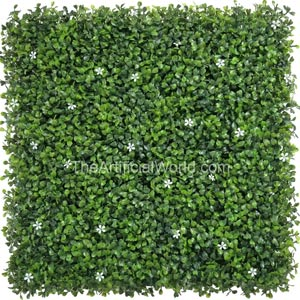 boxwood with flowers